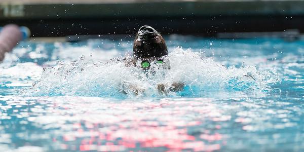 Willamette Bearcats vs Pacific Boxers