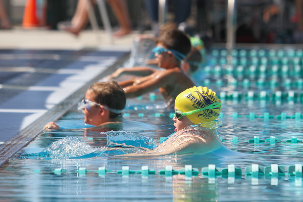 Aqua Aces Swim Meet