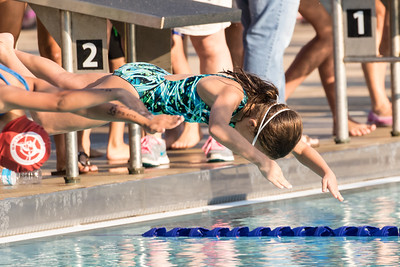 Event-03_9-10_100_Free_Relay_01_20150801