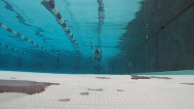 swim-01JUL2016