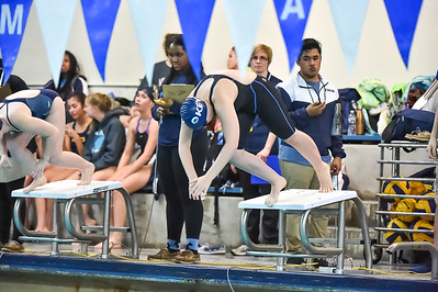 2017 Key IAAM Swimming Champs-4