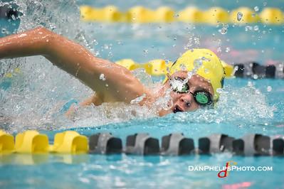 2017 NAAC Swim Fest-12