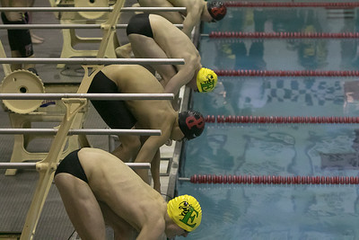 Emmaus Swimming 021717