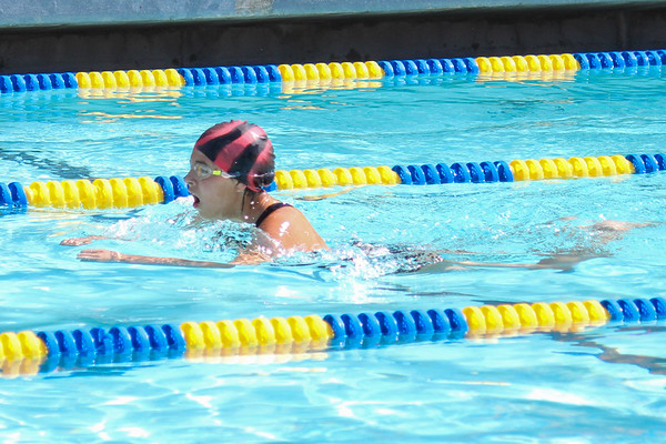 Shafter Sting Ray Swim Meet