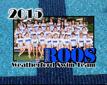 2015 Swim Season