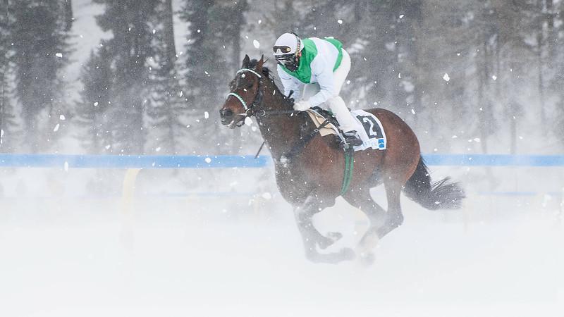 White Turf; Horse Races on Snow; Sankt Moritz; Engadin; Switzerland