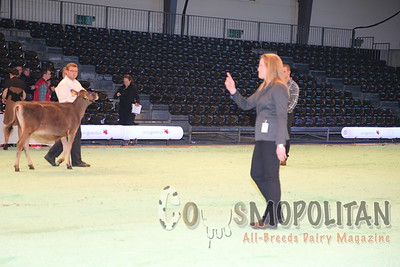 Swiss Expo Jersey Show 2015