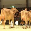 SwissExpo16_BS_IMG_9037