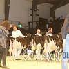 SwissExpo16_HO_IMG_1323