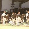 SwissExpo16_HO_IMG_1326