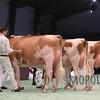 SwissExpo16_RWHO_IMG_0206