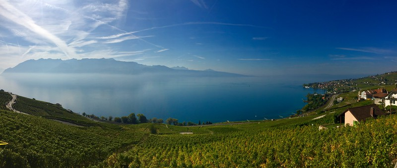 The views across the vineyards to Lake Geneva
