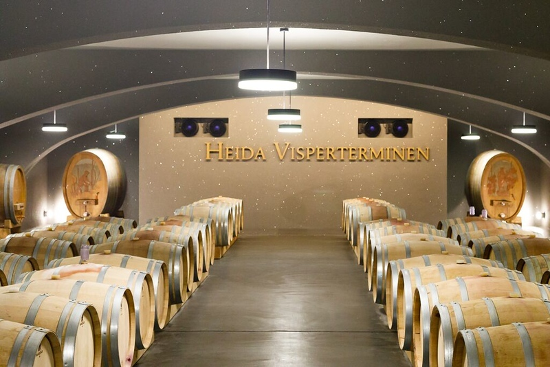 Swiss Semester visits the cooperative winery in Visperterminen