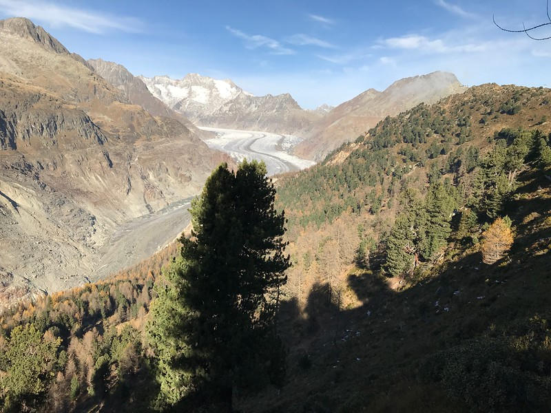 The view of the Aletsch Glacier during the Goms Bike Trip