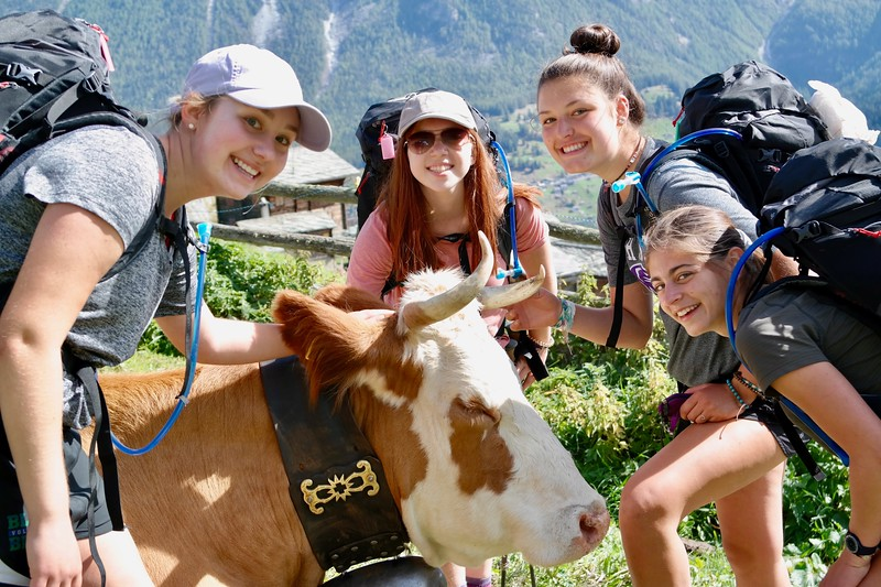 Amanda, Emily, Lexi, and Nora posing with a Swiss cow on the pass trips