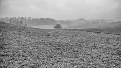 Heitenried (Fog)