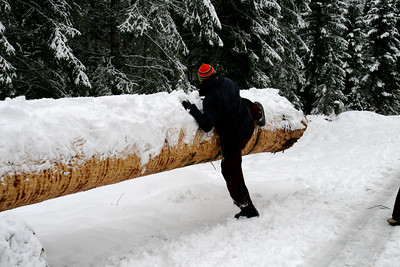 Jumping over a log! Exciting winter time activity invented by Anj