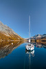 Fall foliage color in the larch trees and a sailboat reflected in Lake Sils in the Engadine Valley, Graubuden, Switzerland, Europe.