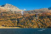 Wind surfing on Lake Silvaplana with fall foliage color in the larch trees in the Engadin Valley, Graubuden, Switzerland, Europe.