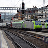BLS, 485 004 (91 85 4485 004-6 CH-BLSC) at Spiez on 21st January 2014