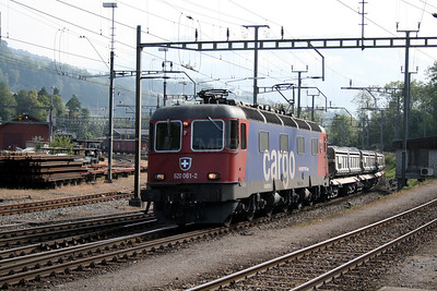 620 061 at Arth Goldau on 10th September 2007