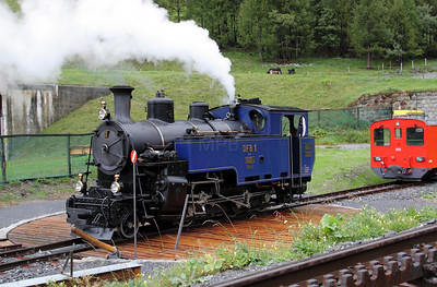 4) DFB, 1 at Oberwald on 27th August 2010