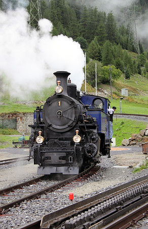 3) DFB, 1 at Oberwald on 27th August 2010
