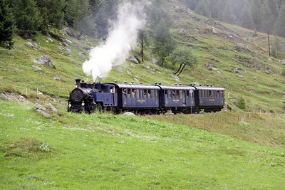 1) DFB, 1 at Oberwald on 27th August 2010
