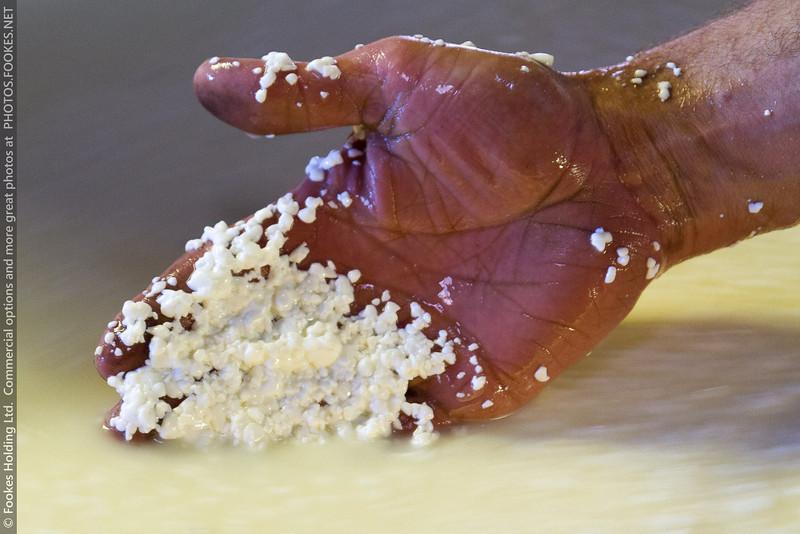 Grains de fromage (après décaillage)