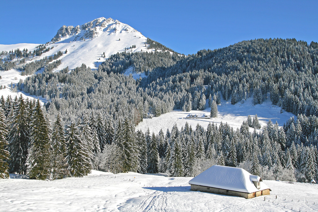 Les Paccots, Fribourg Alps / Alpes fribourgeoises