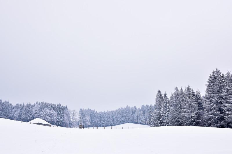 Winter landscape, Fribourg / Paysage enneigé, Fribourg