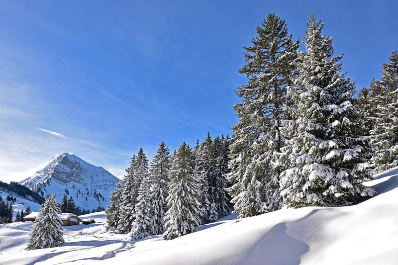 Moléson, Gruyères winter scene / Moléson, Gruyères, scène hivernale