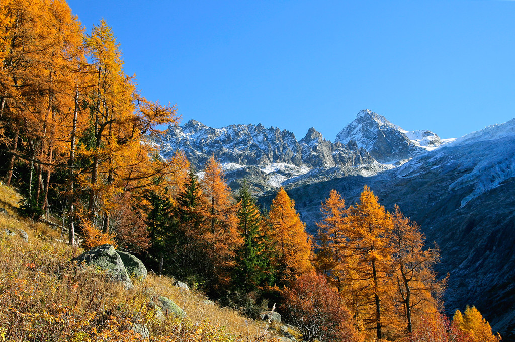 Autumn in the Vallée du Trient / La vallée du Trient en automne