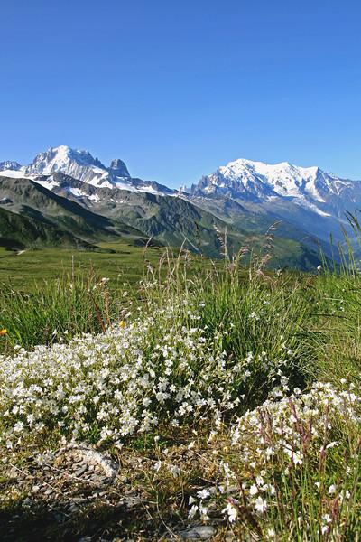 Col de Balme, Vallée du Trient