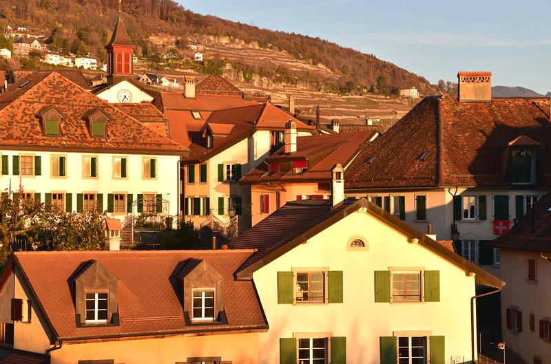 Rivaz, Lavaux