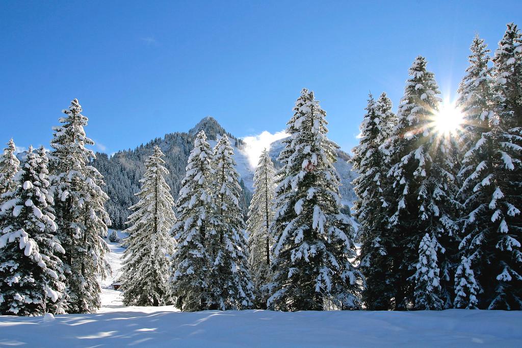 Snow scene, Les Mosses / Paysage hivernal, Les Mosses