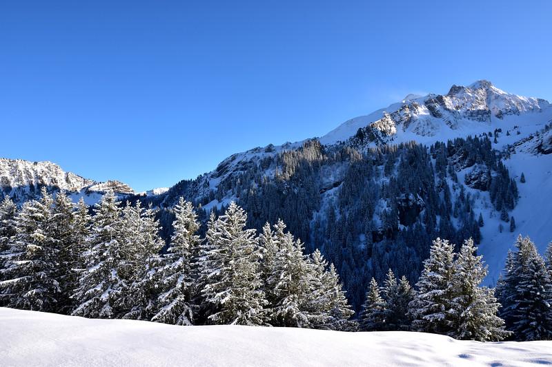 Winter landscape, Les Mosses / Paysage hivernal, Les Mosses