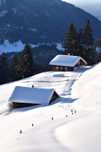 Snow scene, Leysin / Paysage hivernal, Leysin
