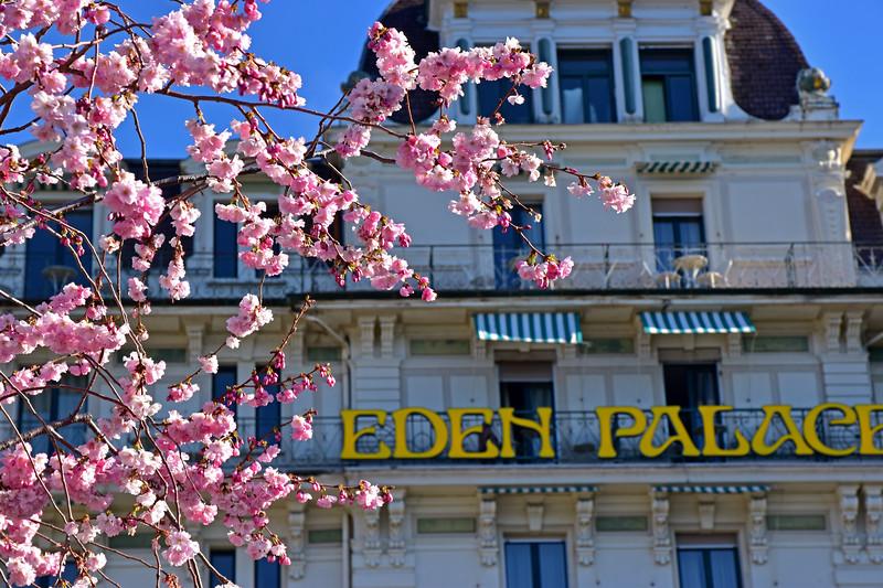 Montreux in spring / Montreux au printemps