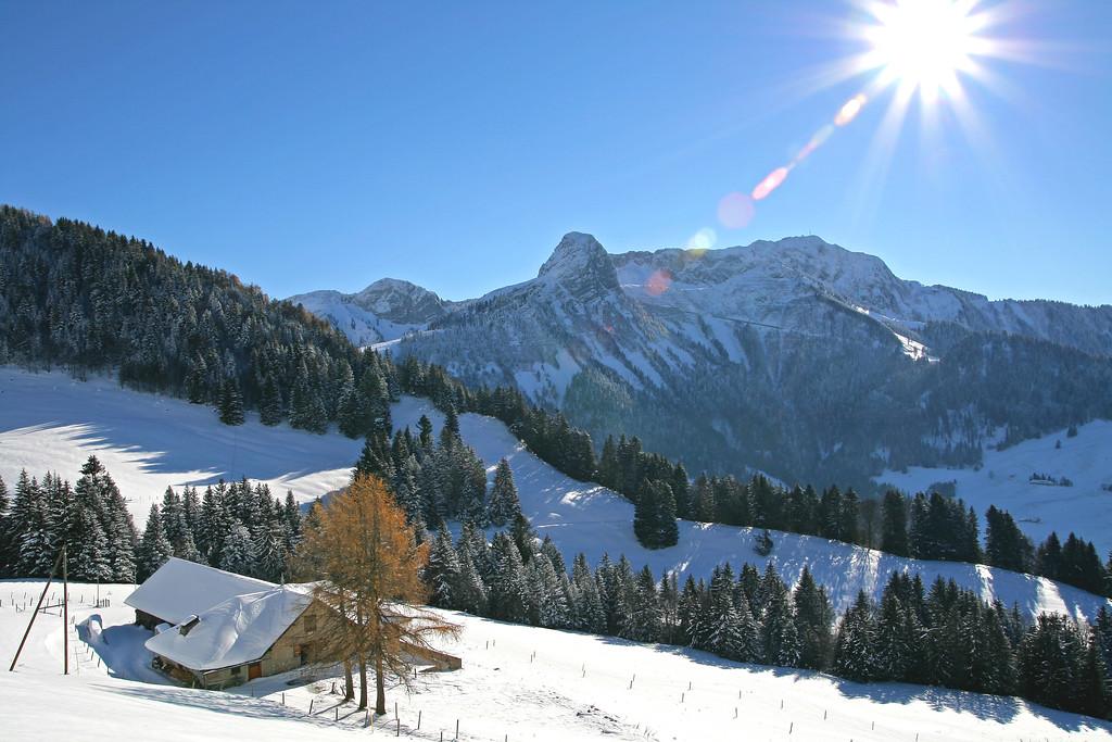 Winter scene above Montreux / Paysage hivernal sur les hauts de Montreux
