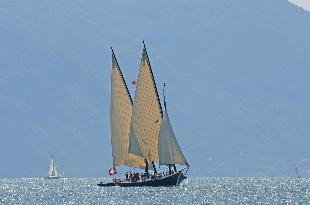 Lake Geneva traditional sailing / Voiles latines sur le Léman