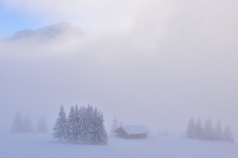 Winter fog / Brouillard hivernal