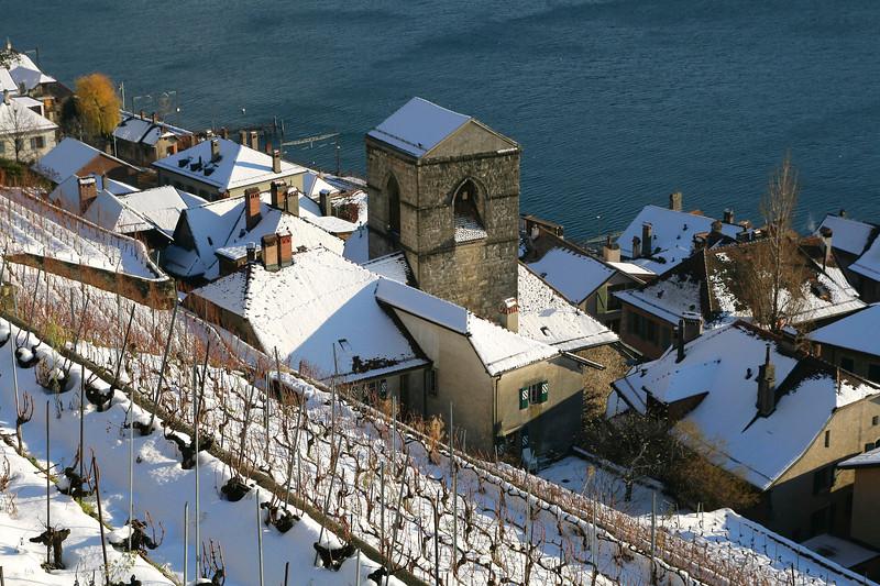 St Saphorin, Lavaux snow scene / St Saphorin, Lavaux sous la neige