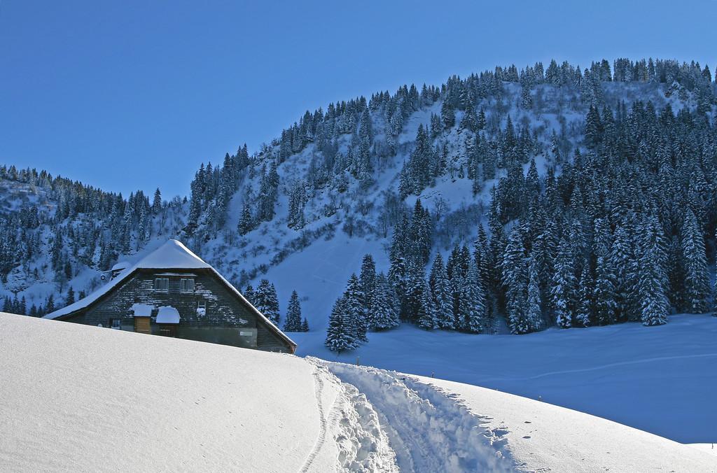 Winter scene above Vevey / Paysage hivernal sur les hauts de Vevey