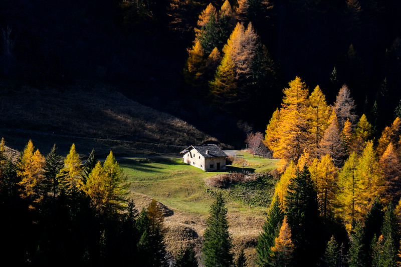 Autumn colours in Val Ferret / couleurs d'automne dans le Val Ferret