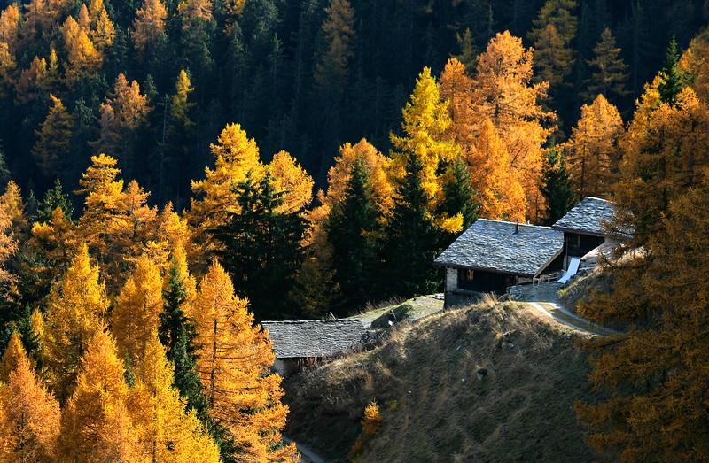 Autumn colours in Val d'Entremont / Couleurs d'automne dans le Val d'Entremont