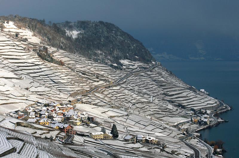 Lavaux winter scene / Le Lavaux en hiver