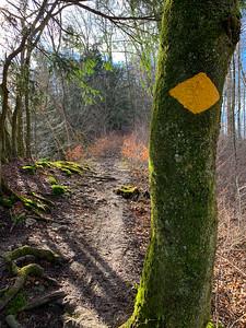 Yellow-marked wanderweg in Olten.