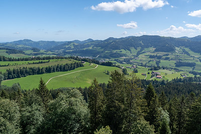 View from the summit tower on Bachtel.
