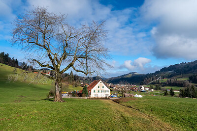 A farm outside Gibswil, Switzerland.